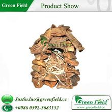 Natural Decoration Outdoor Wood Bird House