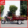 2015 200ccThree Wheel Motorcycle/Adult Tricycle