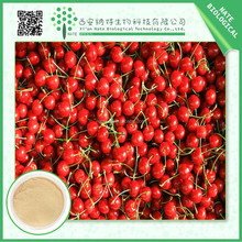 Wholesale Chinese herbal Cherry Fruit Extract 20:1 with nice price