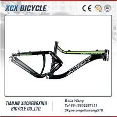 frame bike.jpg