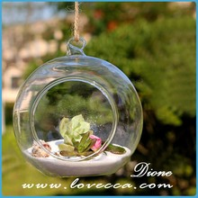 home garden decorative showcase glass,round glass globe terrarium