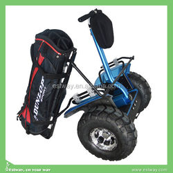OEM high quality 2 wheels electric balance scooters, electric golf utility car highce approved
