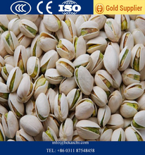 Pistachio Nut Type and Dried, Fresh, Frozen Style 100% Natural Closed Shell Pistachio