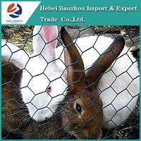 "1/2"" Cheap Rabbit Cages Hexagonal Wire Mesh"