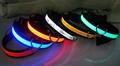 Collar de Seguridad LED para Perro - De 28 a 60cm