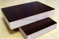 WBP /MR Glue Film Faced Shuttering Plywood for concrete