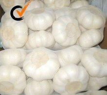 ajos frescos de alta calidad, ajos de nueva cosecha, para exportación