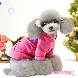 Explosion models Specials Teddy dog clothes pet supplies factory direct wholesale apparel processing