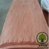 /product-gs/bintangor-veneer-engineered-veneer-thin-veneer-slate-60277956127.html
