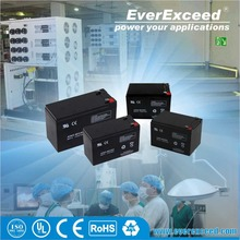 EverExceed 12v 22ah small rechargeable security alarm system vrla battery