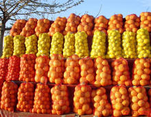 colorful hdpe raschel mesh bags for vegetables