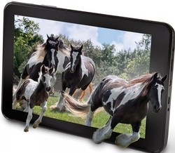 10inch android tablet 3D tablet with 3g built-in
