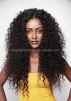 factory price top fashion curly brazilian human hair wig for black women