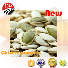 new bulk raw pumpkin seeds white
