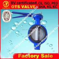BV-SY-257 without flange holes rubber seal butterfly valve seat ring