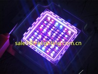 China Market CE Approved Brigelux Chips 3w 10w 30w 60w 100w LED RGB Full Spectrum for Plant Grow Light