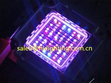 China Market CE Approved Brigelux Chips 3w 10w 30w 60w 100w LED RGB Full Spectrum for Plant Grow Light