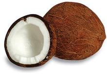 FARM FRESH COCONUTS FROM TAMILNADU