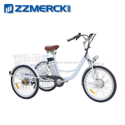 Lithium Battery Cargo Box Electric Tricycle