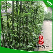 Decorativo personalizado de bambú