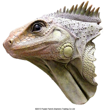 Poly Resin Large Animal Head Lizard Wall Plaque