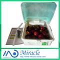 Household frutas e máquina de esterilização de vegetais MGS-01