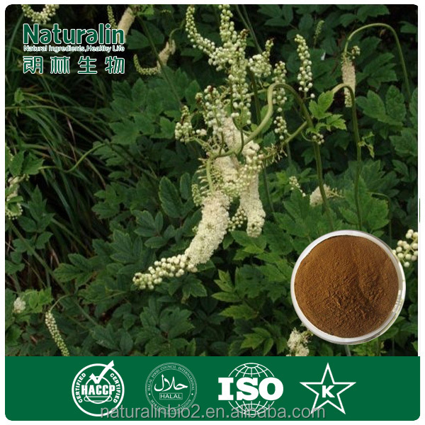 Factory Provide High Quality Black Cohosh Extracts