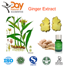 100% Natural Ginger Root Ginger Extract/Fresh Ginger Extract