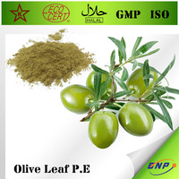 GMP 100% Natural Chromadex Standard Olive Leaf Extract 10%-20% Hydroxytyrosol and Oleuropein