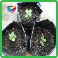 China manufacture best selling durable seed planting cheaper plastic grow bags