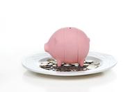 2015 Christmas kid gift Piggy shape novelty money bank