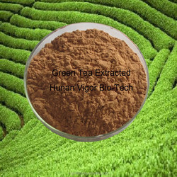40%-98% EGCG with polyphenols with catechins Green tea extract