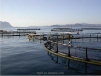 PE round plastic floating goldfish farms net/fishing net in deep sea for tilapia