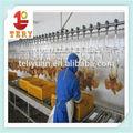 china alta qualidade frango abatedouro equipamentos
