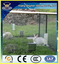 Cheap Commercial Rabbit cages