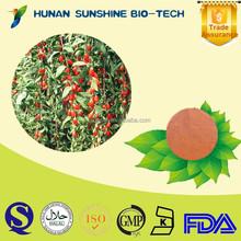 Herbal Medicine Extract Goji Berry P.E./ Lycium Chincnse Mill. Strengthen Liver & Kidney