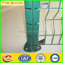 PVC Coated Curved Wire Mesh Fence (fast delivery and professional factory)