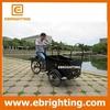strong frame rear hub moter newly kids developed mini eu market cargo bike for wholesales