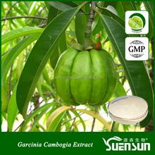 natural hydroxycitric acid 50% 60% hca extract garcinia cambogia