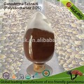 Esencia de ganoderma polvo( 50% shell- roto de esporas +50% extracto)