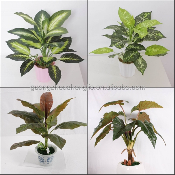 Sjh010631 shengjie artificial plants indoor plants with red flowers ornamental plants with name - Names of indoor plants ...