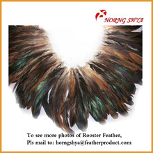 Feathers Rooster