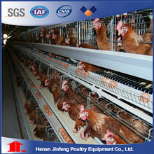 Layer/broiler/pullet farm automatic poultry cage for Costa Rica