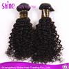 Guangzhou Shine Hair Trading Company Best Selling kinky curly hair brazilian