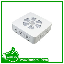 scientif name of plant mushroom 5w chip led grow light