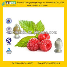 GMP Factory Supply Raspberry Extract Powder