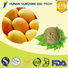 Alibaba China Supplier Mango Juice Powder as Raw Material for Beverage