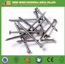 bright common round wire nail