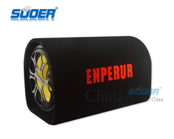 10 Inch Car Audio Subwoofer Tunnel Type Car Speaker Subwoofer