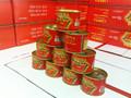 Pasta de tomate enlatada 210g/tin fácil abrir e molho de tomate de fábrica com o melhor preço